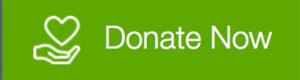 donate now website