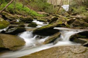 Dunlap_TomsRun_waterfall_IMG_9522 smaller