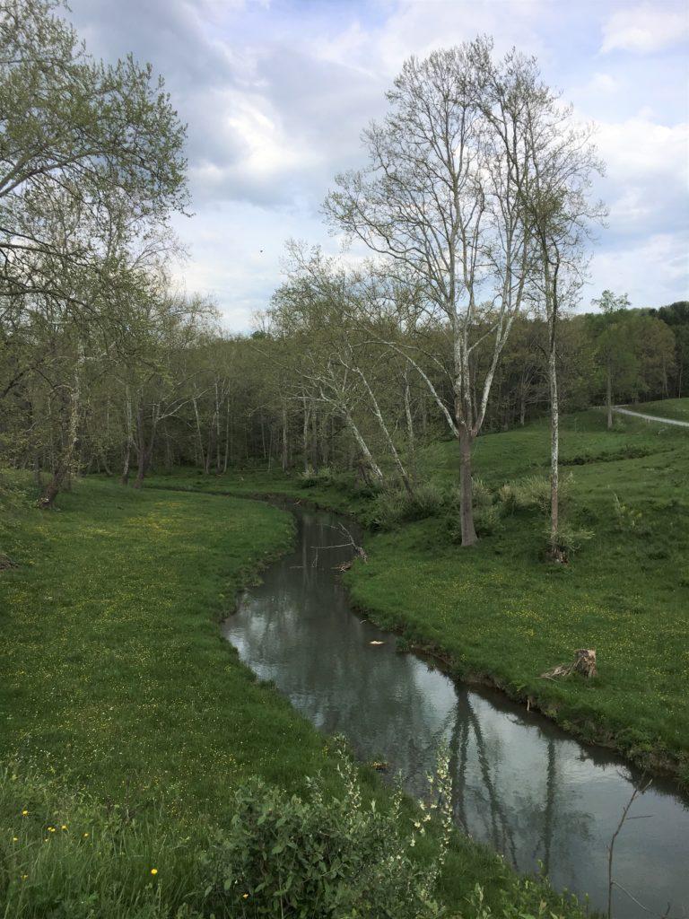 creek lightened