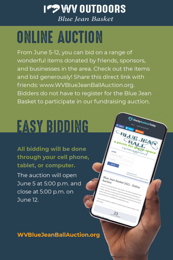 auction-image-1